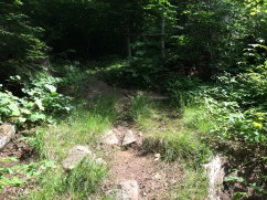 No staircase here. Just an uphill rock strewn obstacle course. Super.