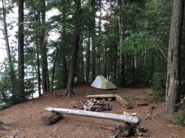 My site on Happy Isle. Trees, tent and a bench. What more could you ask for?