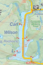 Carl Wilson Lake