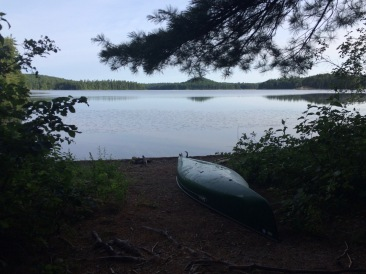 Good canoe landing area.