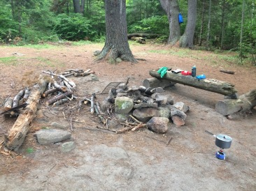 Potential tent spots to left of tree, to far right and right in front of the fire pit.