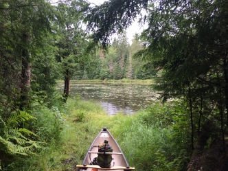 Looking out at Ravenau from the end of the Cedar/Rvaenau portage.