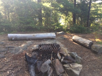 The fire pit. Also some logs and rocks.