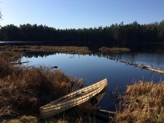 Pogonia Lake. More a pond on steroids than an actual lake.
