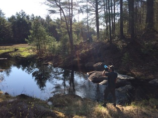 Bob, checking out the beaver pond just before Mark's Meadow. Also, posing for Lifestraw's new ad campaign