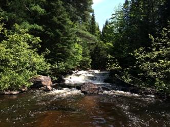 My waterfall. No Creek Sharks allowed.