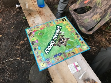 Sweet bench/Animalopoly surface