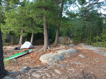 Looking towards the tent pad from in front of the fire pit. Water is to the left.