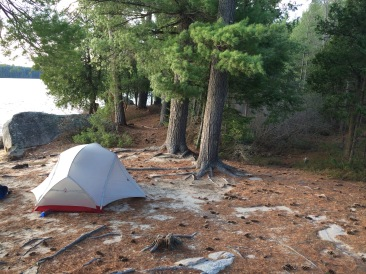 And another Tent spot. Probably room for a third tent beside this one as well.