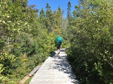 One of the sturdiest boardwalks I've ever boardwalked.