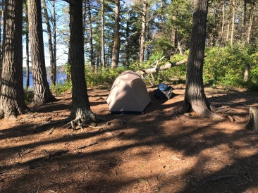 That's a tent spot.