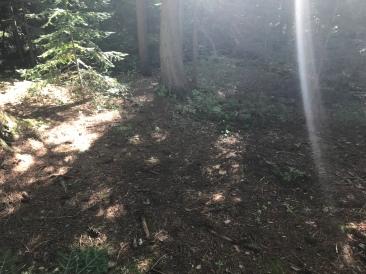 The secret tent spot