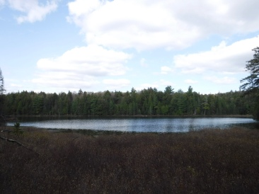 Looking out at the unnamed lake/magic pond
