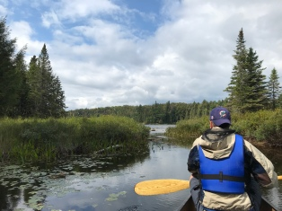 Paddling into Harry Lake