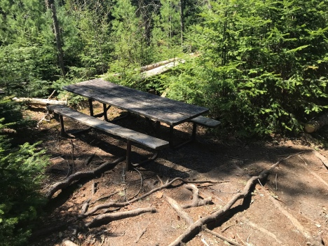 Hey, a picnic table. It's about halfway down the trail.
