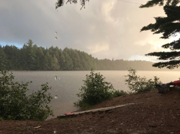 View through the rain