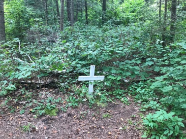 Tom Thomson's Grave (maybe)