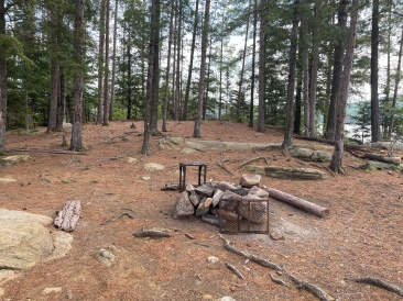 Looking towards the fire pit from near the front of the site.