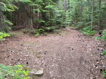 The path to the thunderbox and a tent site
