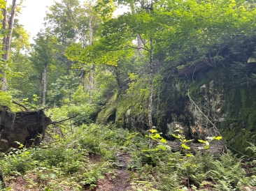Along the Islet/Cranebill portage