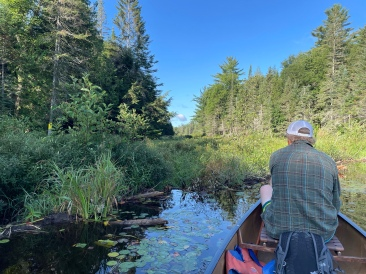 The beaver dam before the portage to Bluebell